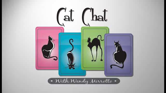 Cat Chat 73
